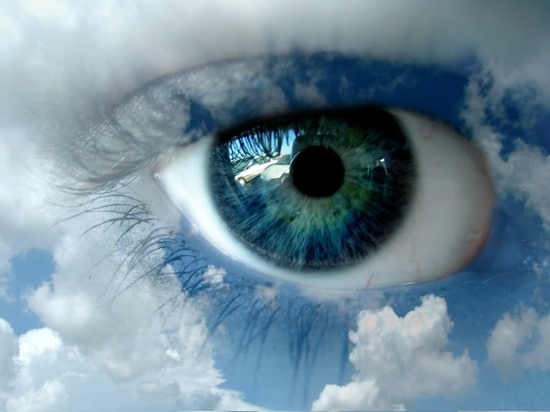 Blue-eye-eyes-8326071-800-600