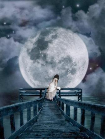moonlight-17550489225