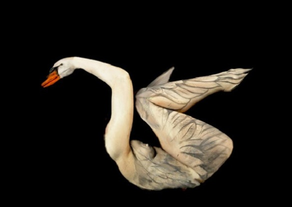 amazing-swan-body-paint-optical-illusion